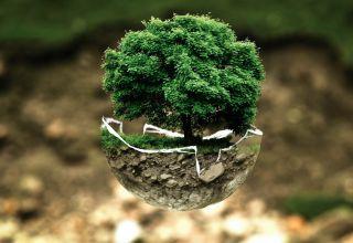 Miliony na ochronę na bioróżnorodności
